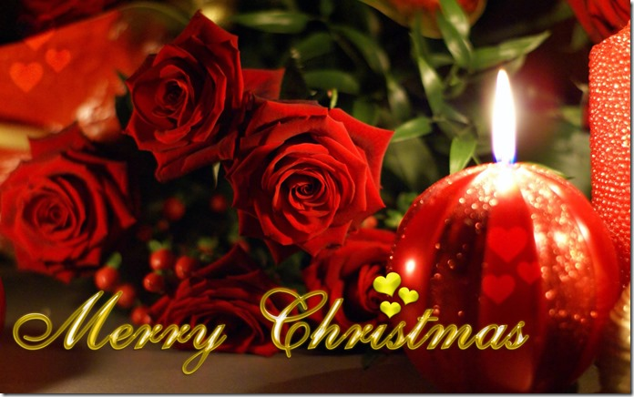 merry-christmas-roses